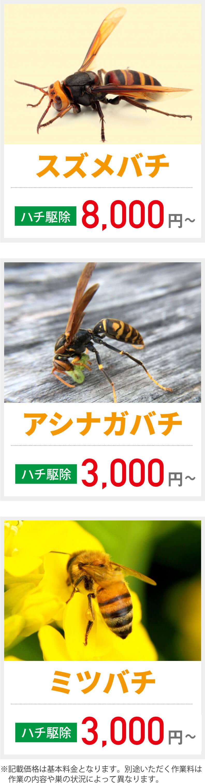 駆除 料金 蜂の巣