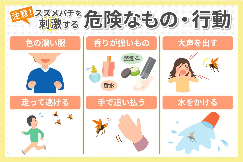 要注意!スズメバチを刺激してしまう6つの危険行為